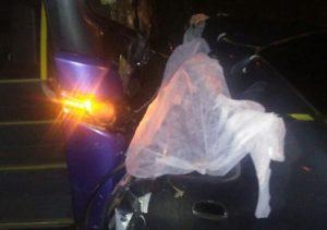 Carro bateu de frente em ônibus e família morreu (Foto: VC no ESTV)